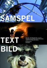 Samspel text-bild av Bo Bergström
